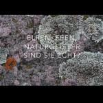 Youtube Video: Was sind Naturgeister?